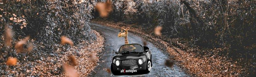 Gør bilen klar til efteråret. Klargøring sikre dig bedre end at komme på bagkant